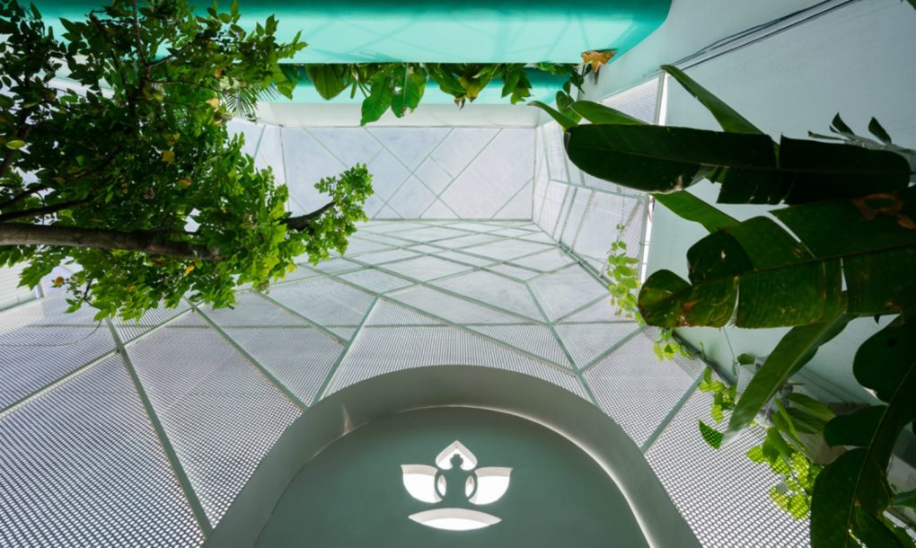 This see-through garden house lets plants soak up the sun